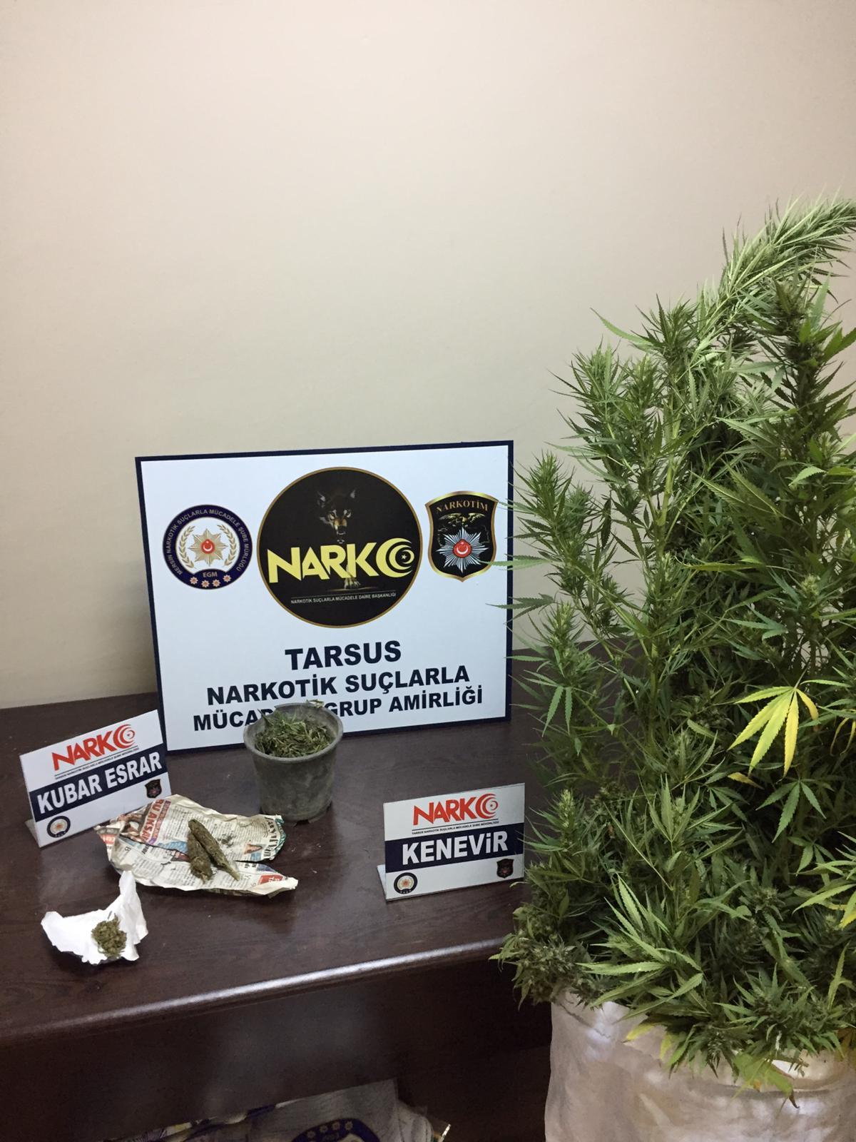 Narkotik Polisi Aman vermiyor…